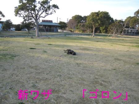 080321の映像 110-k,