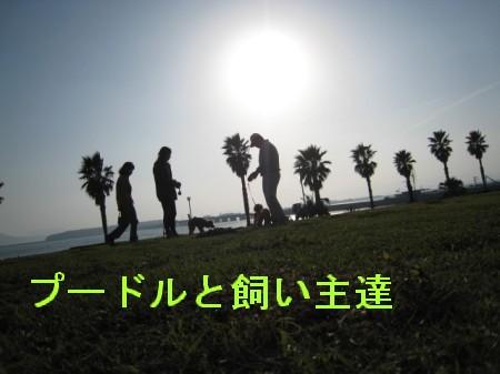 080324の映像 029-p,