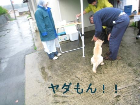 080409狂犬病 028-ttt