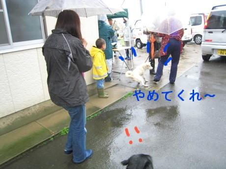 080409狂犬病 025-ttt
