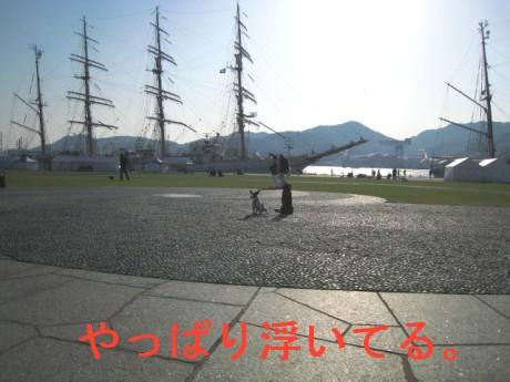 080424帆船祭り 213dff
