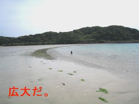 080506松浦の海 095dd