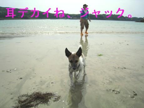 080506松浦の海 221oo