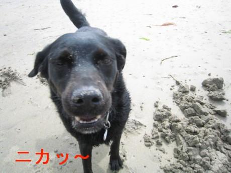 080506松浦の海 246oo