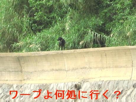 080506松浦の海 231oo