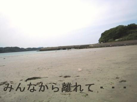 080506松浦の海 256oo