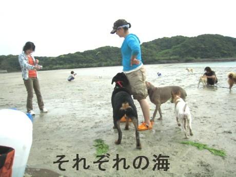 080506松浦の海 305oo