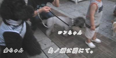 080803の映像 132_u400