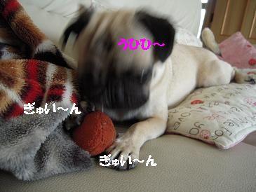 0718-03.jpg