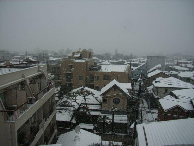 2008-02-03 東京は雪です
