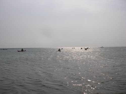 IMGP5804-3.jpg