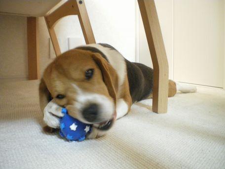 ボール破壊中。