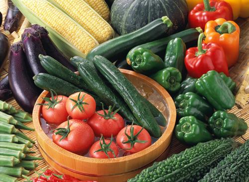 2008.夏野菜
