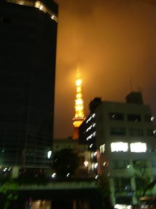 fabi wed tokyo tower