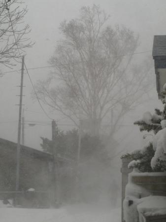 まだ冬だ~~