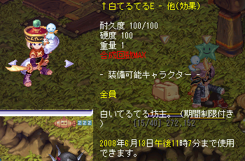 20080606tw-3.png