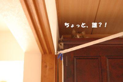 20080530大リン