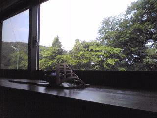かわせみの窓から