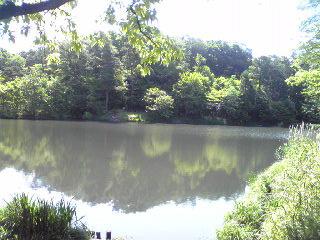 狭山公園たっちゃん池