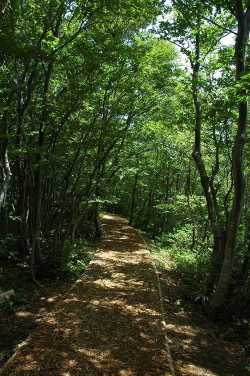 三の峰登山道