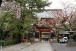 080410八坂神社