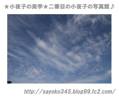 写真館Ⅱ0035