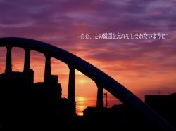 01_20080522173245.jpg