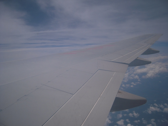 エア・インディアからの眺め
