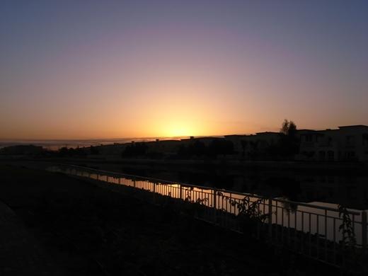 夜明けの散歩道
