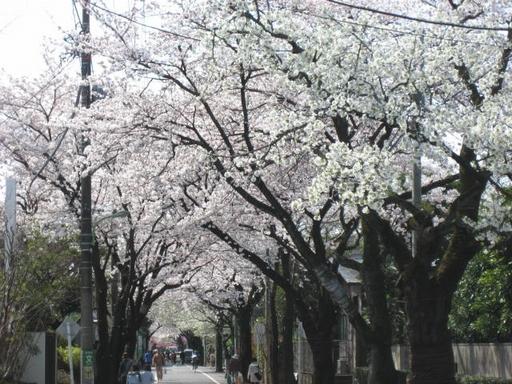 成城学園前の住宅街