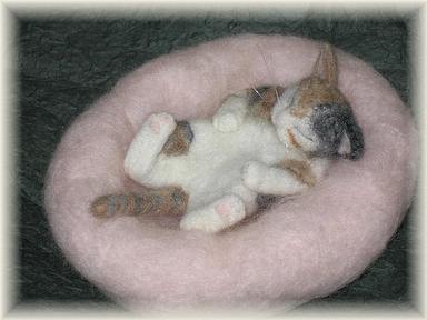 子猫のお昼寝(三毛猫)