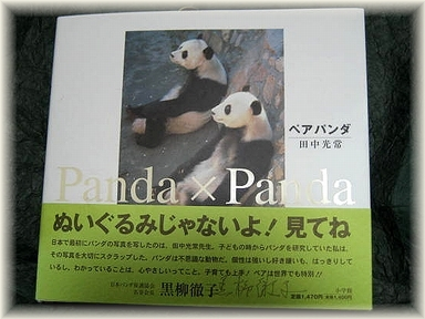ペアパンダ