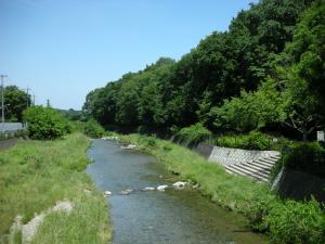 きれいんなった空堀川
