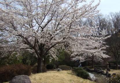 桃源郷公園