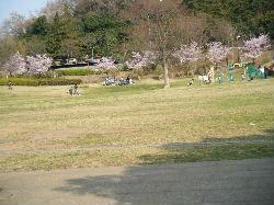 2008_0318りか160107