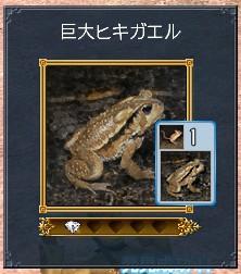 巨大ヒキガエル