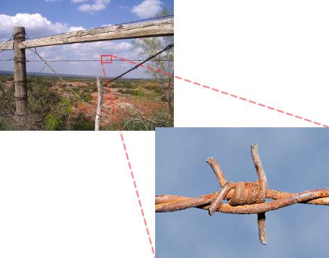 バルバロッサ第32回正解「有刺鉄線」