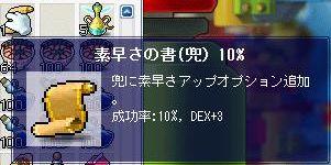 00501.jpg