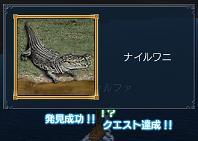 20051111072718.jpg