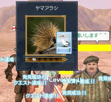 20060714192425.jpg