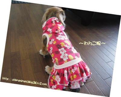 ~わんこ服~