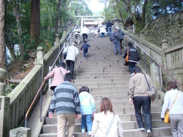 http://blog-imgs-21.fc2.com/s/h/i/shikokureijyou88/20080506083648.jpg