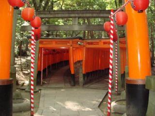 fusimiinari-torii-irikuti.jpg