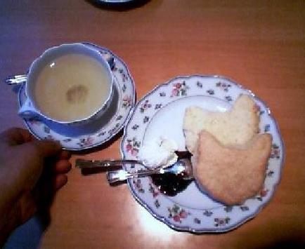 桜茶と猫スコーン