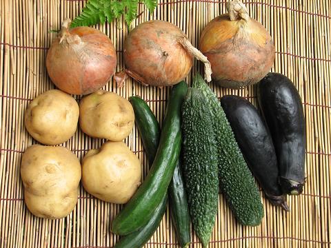 風丸ママの夏野菜 005