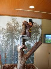 王子動物園②
