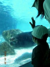 王子動物園⑥