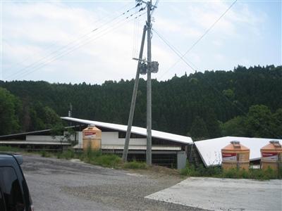 2008051501.jpg