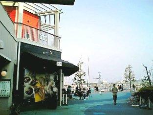 ベイサイドマリーナ横浜のベイサイド デリでチーズバーガーセット003