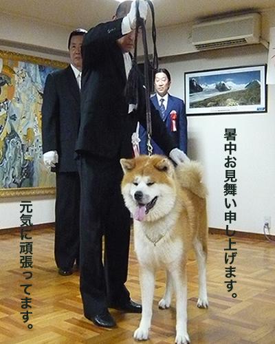 shirai703084.jpg